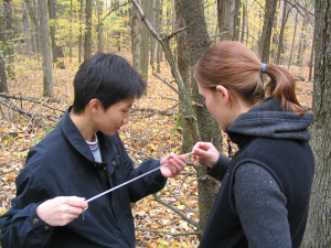students tree coring 1